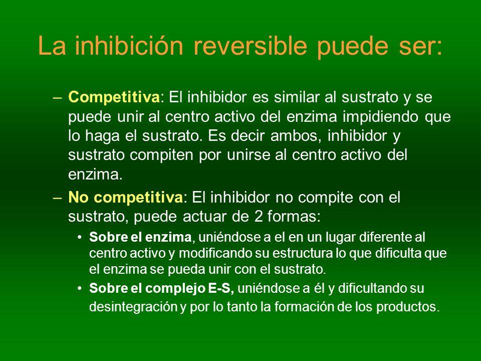 La inhibición reversible puede ser: –Competitiva: El inhibidor es similar al sustrato y se puede unir al centro activo del enzima impidiendo que lo ha