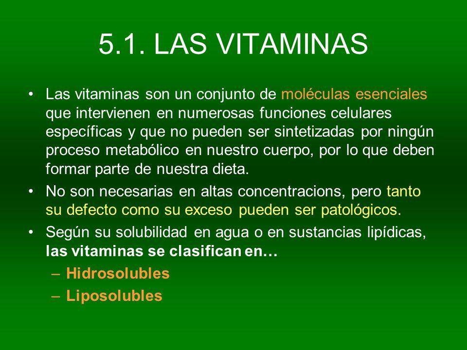 5.1. LAS VITAMINAS Las vitaminas son un conjunto de moléculas esenciales que intervienen en numerosas funciones celulares específicas y que no pueden