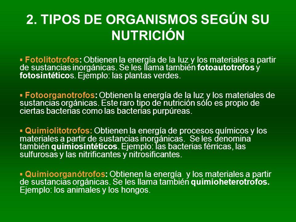 2. TIPOS DE ORGANISMOS SEGÚN SU NUTRICIÓN Fotolitotrofos: Obtienen la energía de la luz y los materiales a partir de sustancias inorgánicas. Se les ll