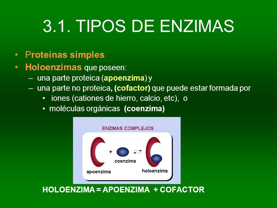 3.1. TIPOS DE ENZIMAS Proteínas simples Holoenzimas que poseen: –una parte proteica (apoenzima) y –una parte no proteica, (cofactor) que puede estar f