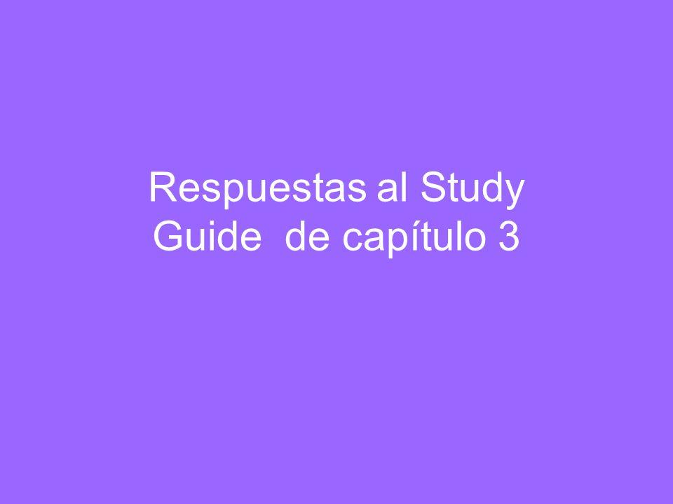 Respuestas al Study Guide de capítulo 3