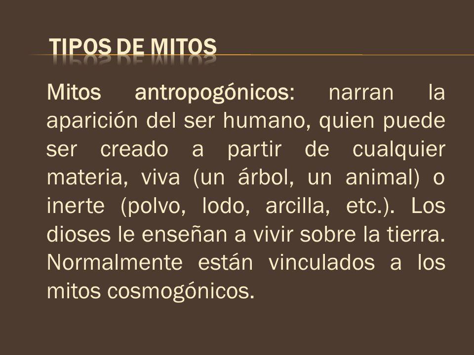 Mitos antropogónicos: narran la aparición del ser humano, quien puede ser creado a partir de cualquier materia, viva (un árbol, un animal) o inerte (p