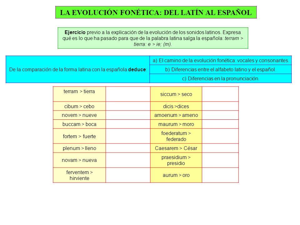 LA EVOLUCIÓN FONÉTICA: DEL LATÍN AL ESPAÑOL Ejercicio previo a la explicación de la evolución de los sonidos latinos.
