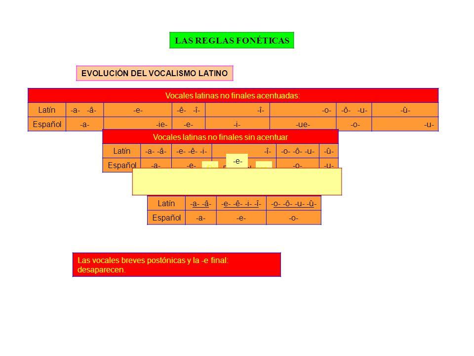 LAS REGLAS FONÉTICAS EVOLUCIÓN DEL VOCALISMO LATINO Vocales latinas no finales acentuadas: Latín-a- -â- -e--ê- -î--î--o--ô- -u--û- Español-a--ie--e--i--ue- -o--u- Vocales latinas no finales sin acentuar Latín-a- -â--e- -ê- -i--î--o- -ô- -u--û- Español-a--e--i--o--u- Vocales latinas finales Latín-a- -â--e- -ê- -i- -î--o- -ô- -u- -û- Español-a--e--o- Diptongos latinosLatín-au--ae- -oe-Español -o- -e- Las vocales breves postónicas y la -e final: desaparecen.