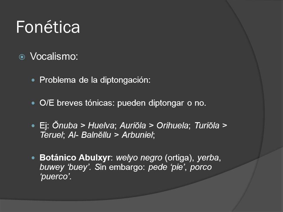 Fonética Vocalismo: Problema de la diptongación: O/E breves tónicas: pueden diptongar o no. Ej: Ŏnuba > Huelva; Auriŏla > Orihuela; Turiŏla > Teruel;