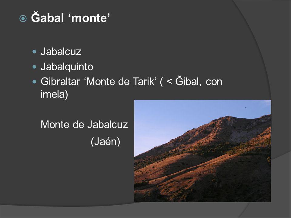 Ğabal monte Jabalcuz Jabalquinto Gibraltar Monte de Tarik ( < Ğibal, con imela) Monte de Jabalcuz (Jaén)