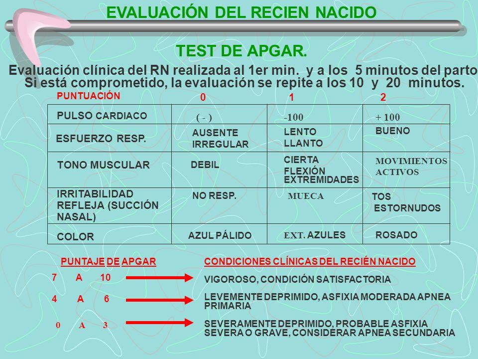 EVALUACIÓN DEL RECIEN NACIDO TEST DE APGAR. Evaluación clínica del RN realizada al 1er min. y a los 5 minutos del parto, Si está comprometido, la eval