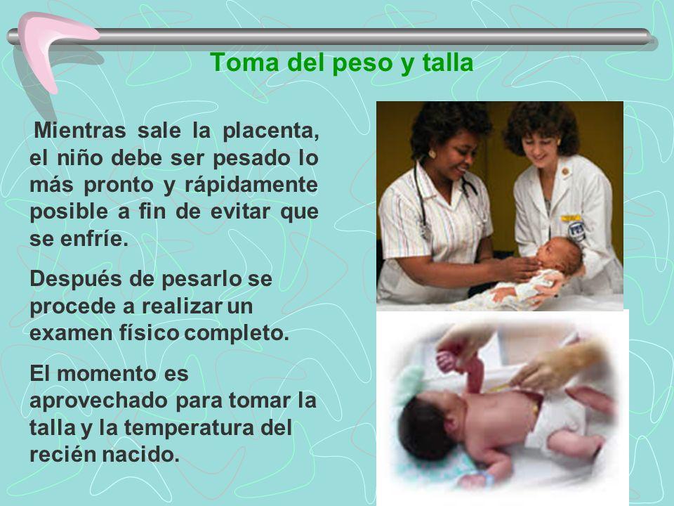 Toma del peso y talla Mientras sale la placenta, el niño debe ser pesado lo más pronto y rápidamente posible a fin de evitar que se enfríe. Después de
