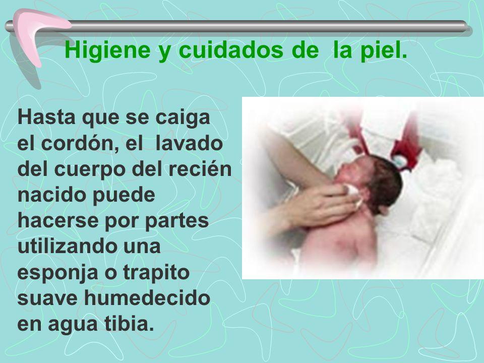 Higiene y cuidados de la piel. Hasta que se caiga el cordón, el lavado del cuerpo del recién nacido puede hacerse por partes utilizando una esponja o