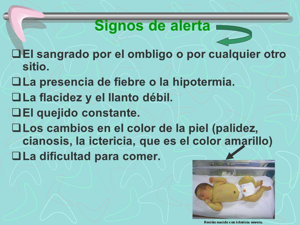 Signos de alerta El sangrado por el ombligo o por cualquier otro sitio. La presencia de fiebre o la hipotermia. La flacidez y el llanto débil. El quej