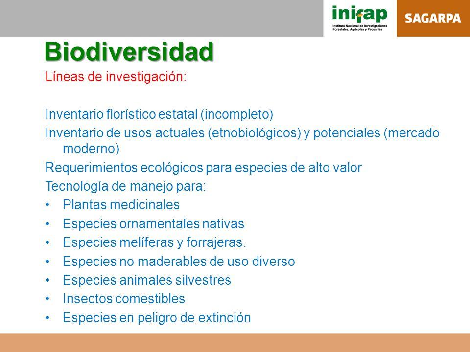 Biodiversidad Líneas de investigación: Inventario florístico estatal (incompleto) Inventario de usos actuales (etnobiológicos) y potenciales (mercado
