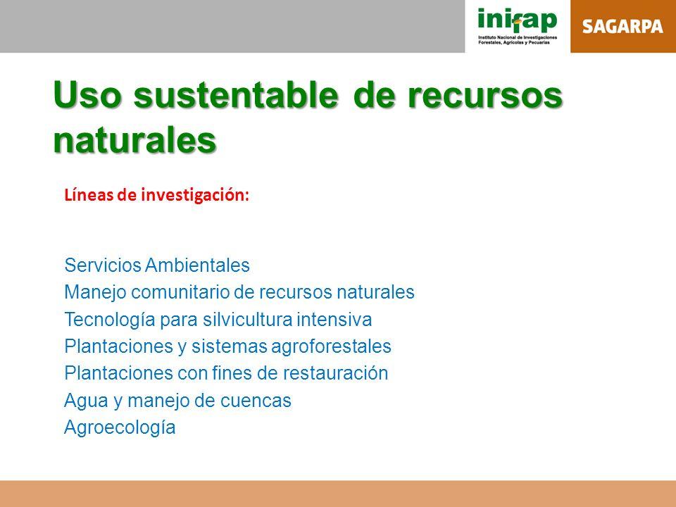 Uso sustentable de recursos naturales Líneas de investigación: Servicios Ambientales Manejo comunitario de recursos naturales Tecnología para silvicul