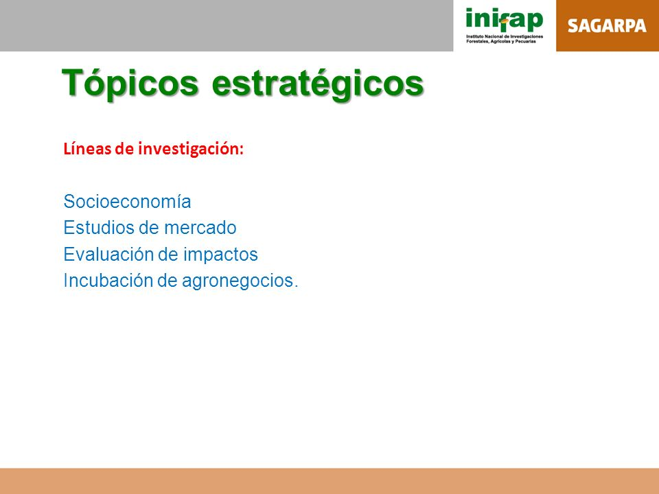Tópicos estratégicos Líneas de investigación: Socioeconomía Estudios de mercado Evaluación de impactos Incubación de agronegocios.