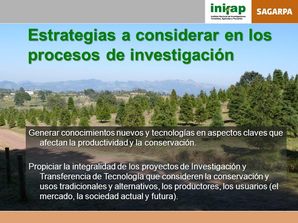 Estrategias a considerar en los procesos de investigación Generar conocimientos nuevos y tecnologías en aspectos claves que afectan la productividad y