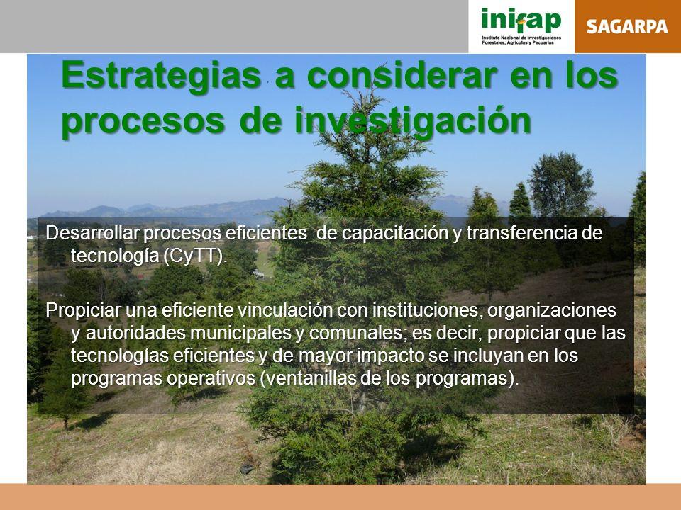 Estrategias a considerar en los procesos de investigación Desarrollar procesos eficientes de capacitación y transferencia de tecnología (CyTT). Propic