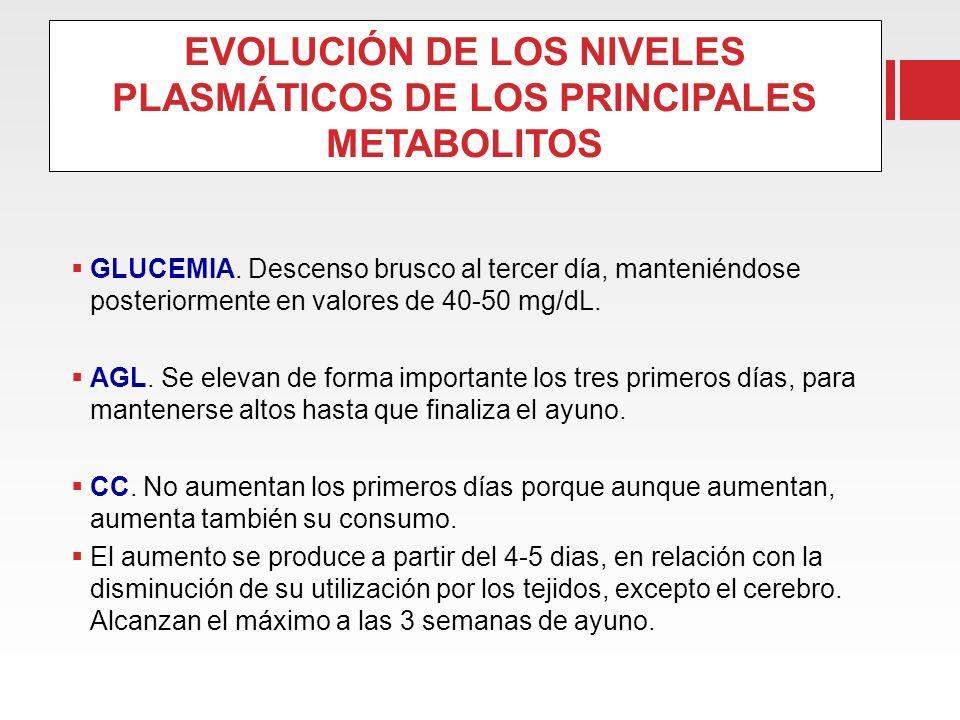 EVOLUCIÓN DE LOS NIVELES PLASMÁTICOS DE LOS PRINCIPALES METABOLITOS GLUCEMIA. Descenso brusco al tercer día, manteniéndose posteriormente en valores d