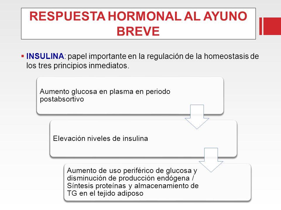 RESPUESTA HORMONAL AL AYUNO BREVE INSULINA: papel importante en la regulación de la homeostasis de los tres principios inmediatos. Aumento glucosa en