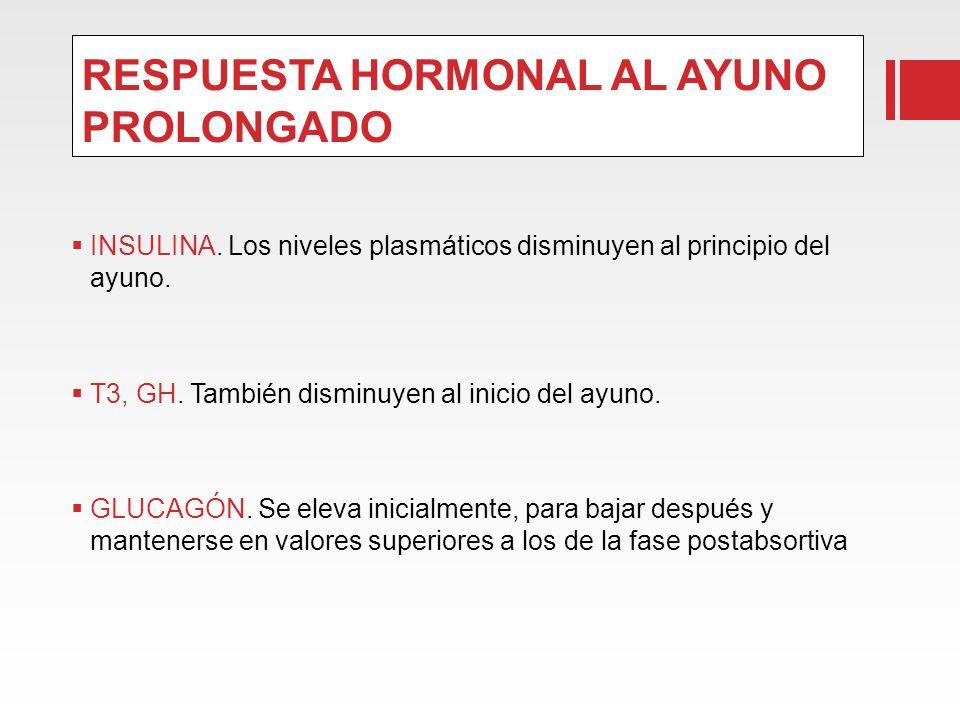 RESPUESTA HORMONAL AL AYUNO PROLONGADO INSULINA. Los niveles plasmáticos disminuyen al principio del ayuno. T3, GH. También disminuyen al inicio del a