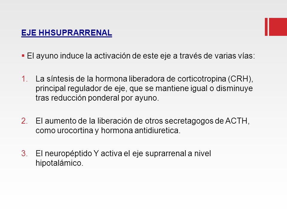 EJE HHSUPRARRENAL El ayuno induce la activación de este eje a través de varias vías: 1.La síntesis de la hormona liberadora de corticotropina (CRH), p