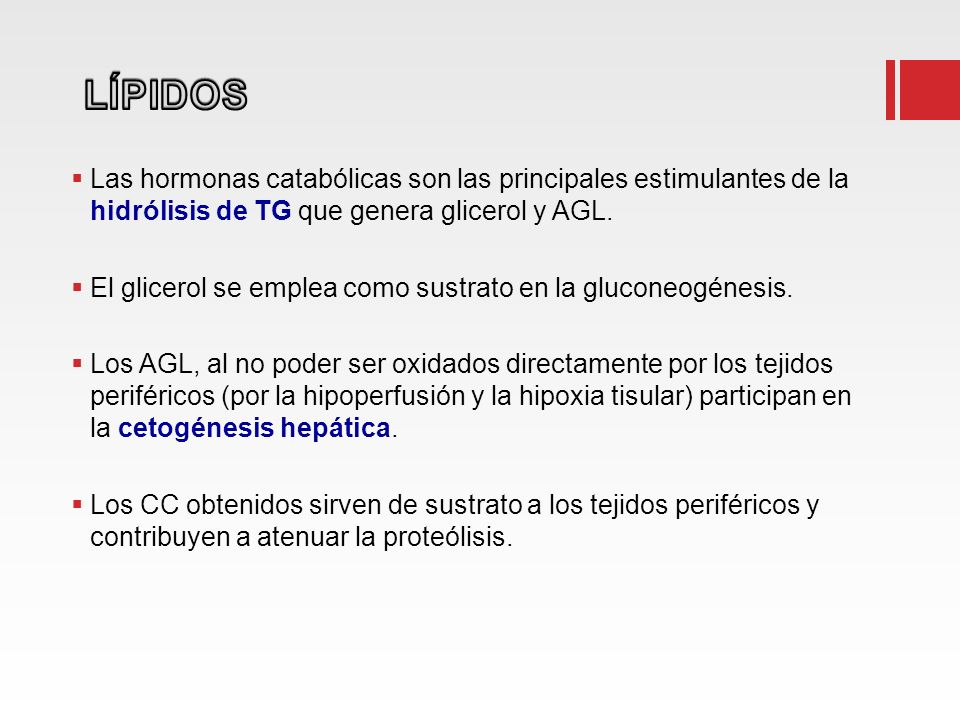 Las hormonas catabólicas son las principales estimulantes de la hidrólisis de TG que genera glicerol y AGL. El glicerol se emplea como sustrato en la