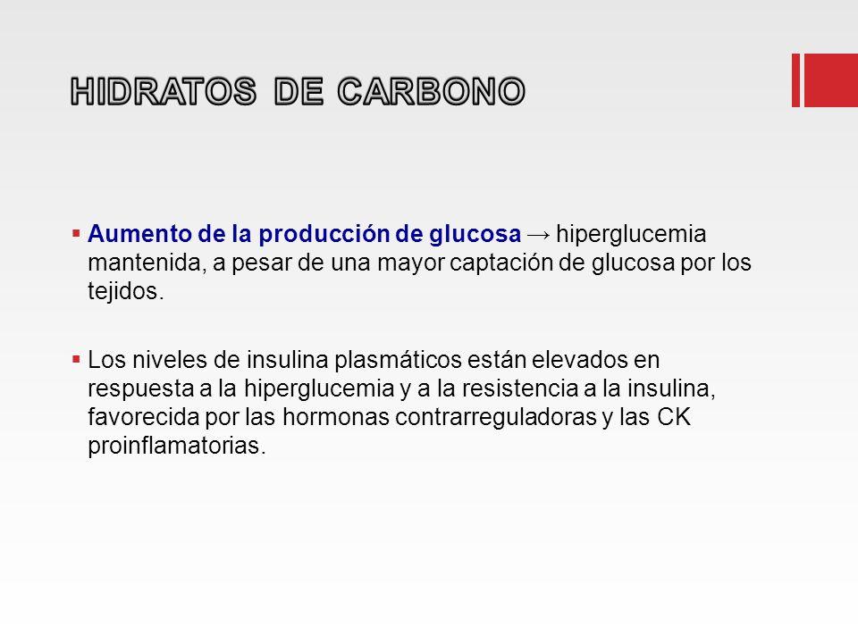 Aumento de la producción de glucosa hiperglucemia mantenida, a pesar de una mayor captación de glucosa por los tejidos. Los niveles de insulina plasmá