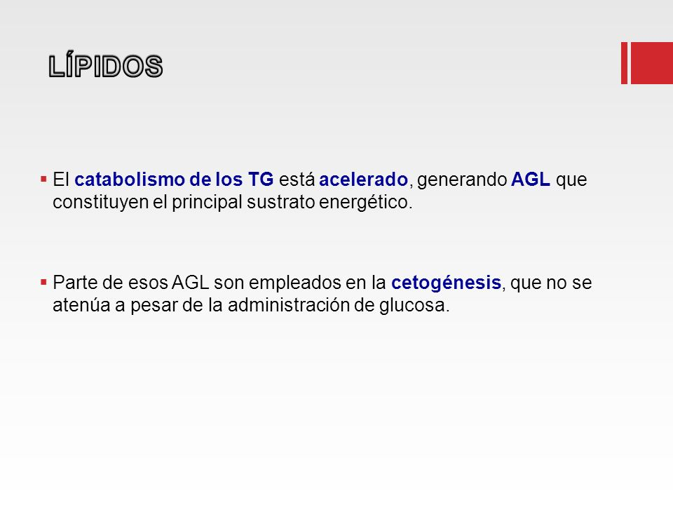 El catabolismo de los TG está acelerado, generando AGL que constituyen el principal sustrato energético. Parte de esos AGL son empleados en la cetogén