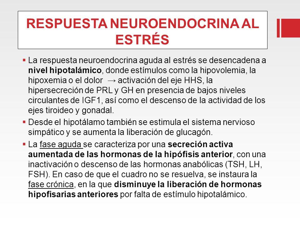 RESPUESTA NEUROENDOCRINA AL ESTRÉS La respuesta neuroendocrina aguda al estrés se desencadena a nivel hipotalámico, donde estímulos como la hipovolemi