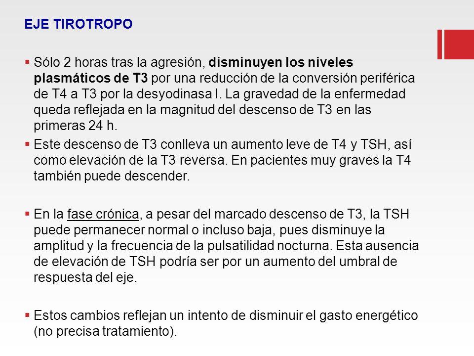 EJE TIROTROPO Sólo 2 horas tras la agresión, disminuyen los niveles plasmáticos de T3 por una reducción de la conversión periférica de T4 a T3 por la