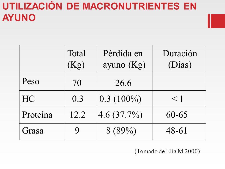 COMPOSICIÓN CORPORAL UTILIZACIÓN DE MACRONUTRIENTES EN AYUNO Total (Kg) Pérdida en ayuno (Kg) Duración (Días) 7026.6 HC0.30.3 (100%)< 1 Proteína12.24.