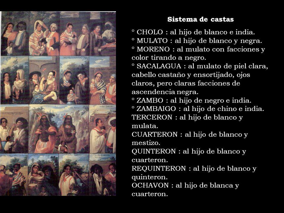 Sistema de castas ° CHOLO : al hijo de blanco e india. ° MULATO : al hijo de blanco y negra. ° MORENO : al mulato con facciones y color tirando a negr