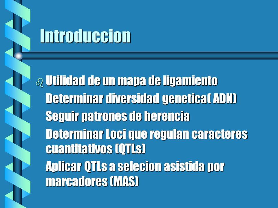 Introduccion b Utilidad de un mapa de ligamiento Determinar diversidad genetica( ADN) Seguir patrones de herencia Determinar Loci que regulan caracter
