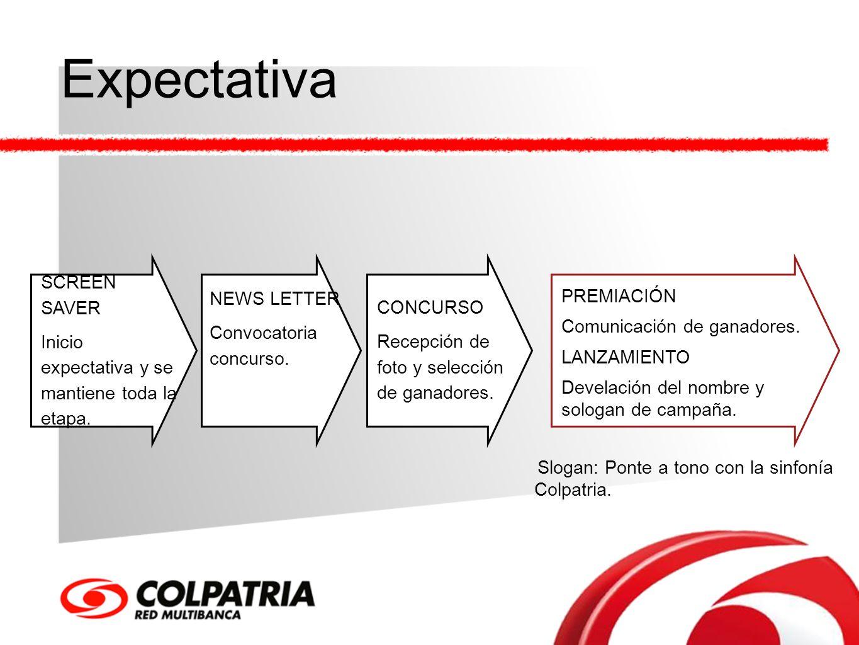 Expectativa SCREEN SAVER Inicio expectativa y se mantiene toda la etapa. NEWS LETTER Convocatoria concurso. CONCURSO Recepción de foto y selección de