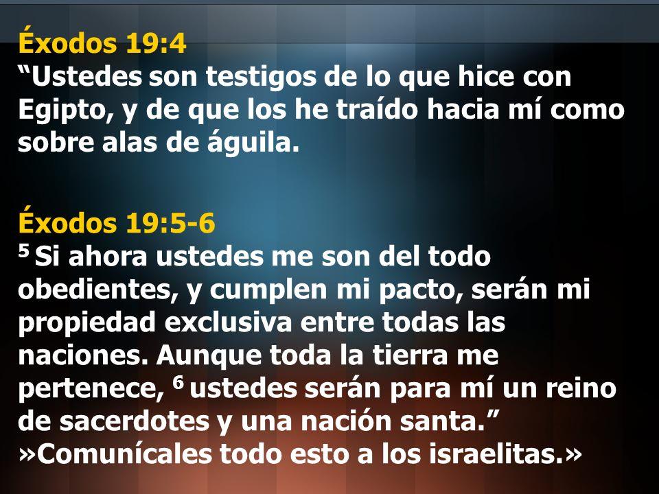 Éxodos 19:4 Ustedes son testigos de lo que hice con Egipto, y de que los he traído hacia mí como sobre alas de águila. Éxodos 19:5-6 5 Si ahora ustede