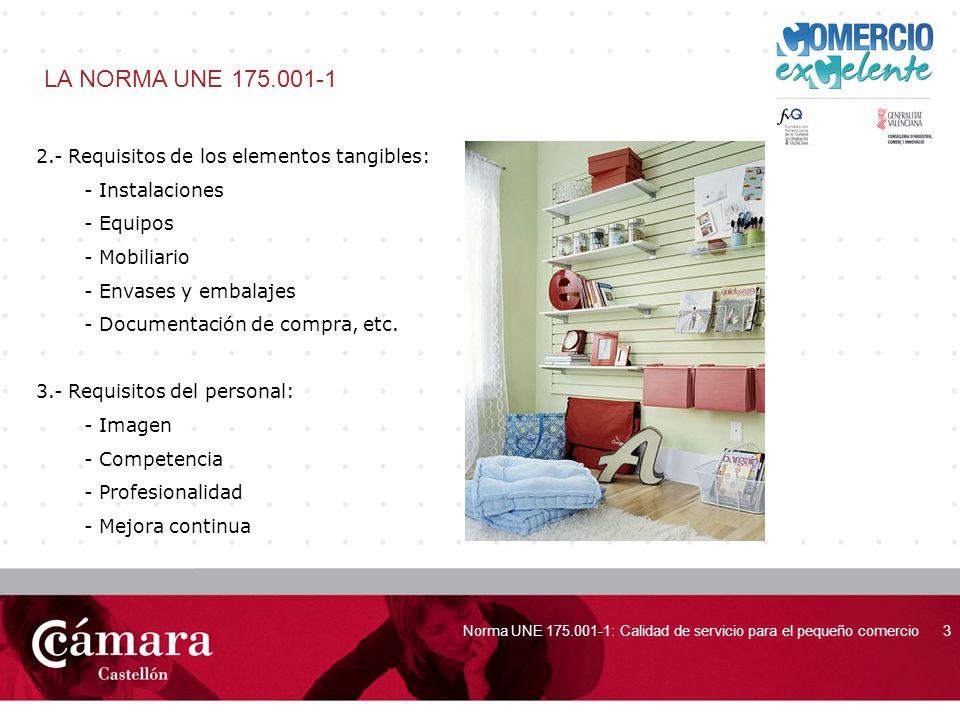 portada Norma UNE 175.001-1: Calidad de servicio para el pequeño comercio3 LA NORMA UNE 175.001-1 2.- Requisitos de los elementos tangibles: - Instala
