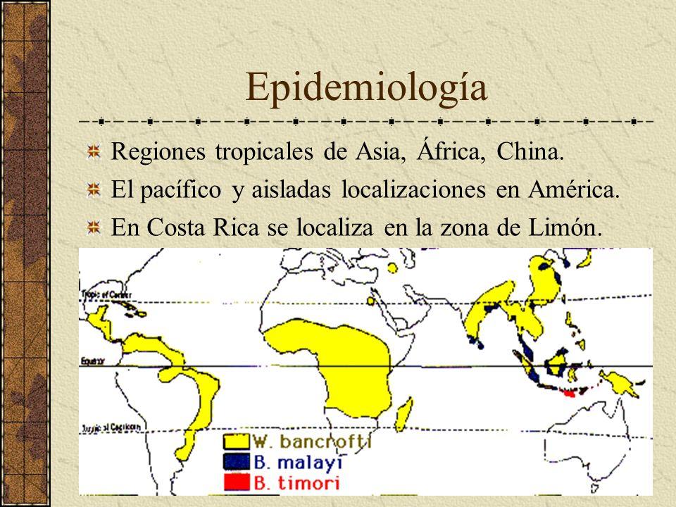 Epidemiología Regiones tropicales de Asia, África, China. El pacífico y aisladas localizaciones en América. En Costa Rica se localiza en la zona de Li