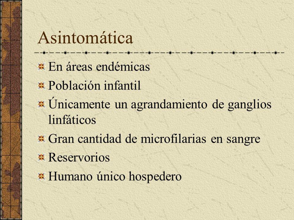 Asintomática En áreas endémicas Población infantil Únicamente un agrandamiento de ganglios linfáticos Gran cantidad de microfilarias en sangre Reservo