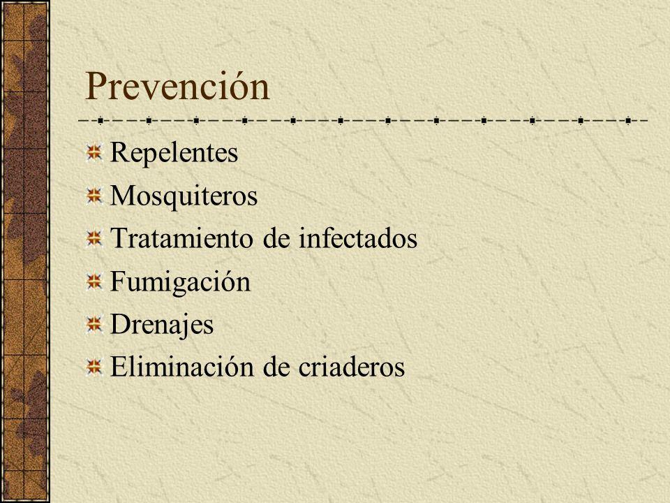 Prevención Repelentes Mosquiteros Tratamiento de infectados Fumigación Drenajes Eliminación de criaderos