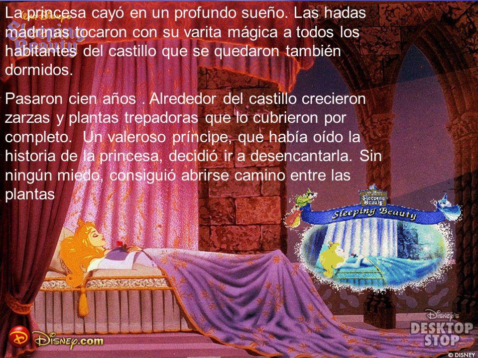 La princesa cayó en un profundo sueño. Las hadas madrinas tocaron con su varita mágica a todos los habitantes del castillo que se quedaron también dor