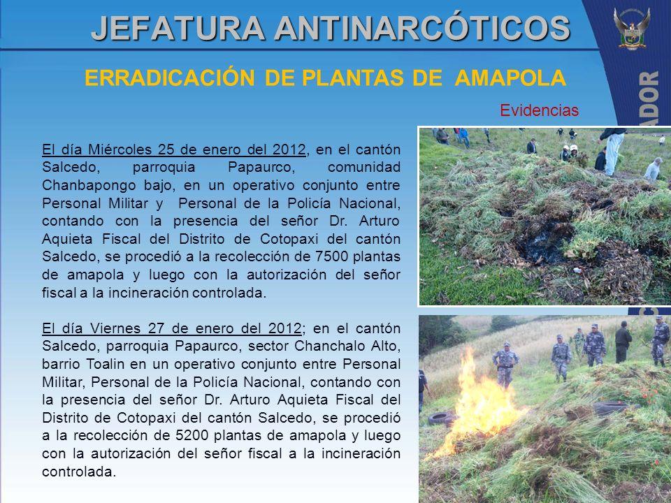 ERRADICACIÓN DE PLANTAS DE AMAPOLA JEFATURA ANTINARCÓTICOS El día Miércoles 25 de enero del 2012, en el cantón Salcedo, parroquia Papaurco, comunidad