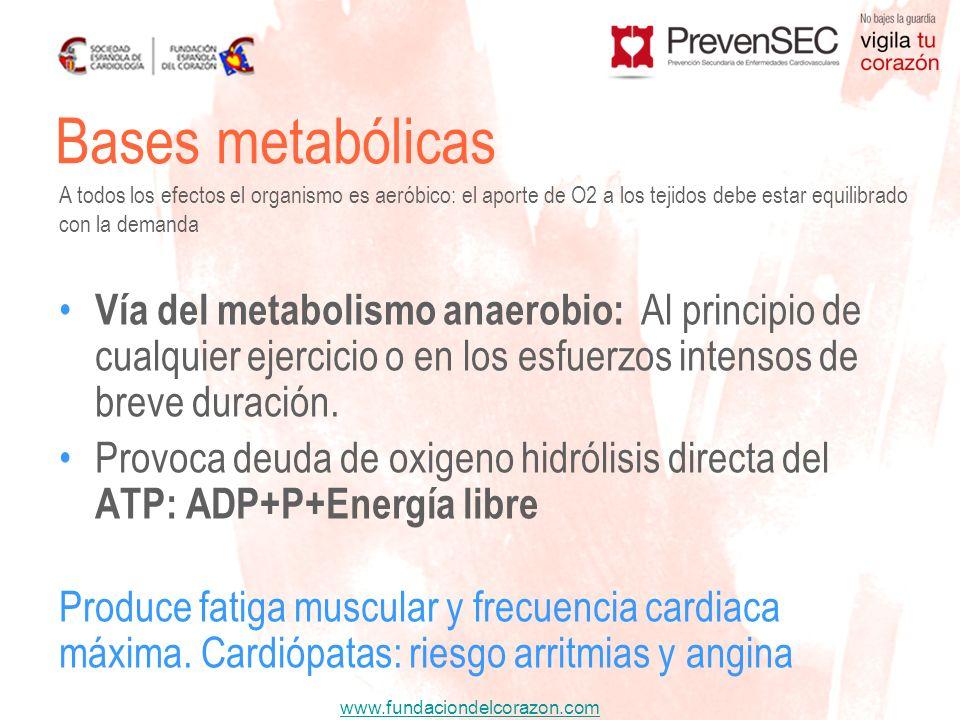 www.fundaciondelcorazon.com Bases metabólicas Vía del metabolismo anaerobio: Al principio de cualquier ejercicio o en los esfuerzos intensos de breve
