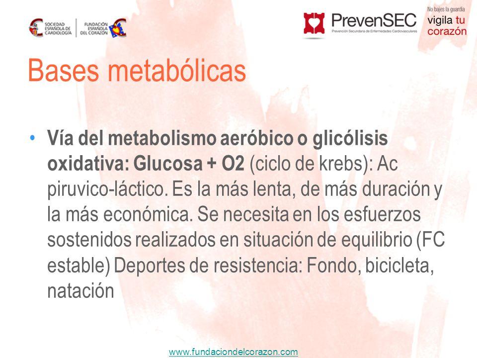 www.fundaciondelcorazon.com Bases metabólicas Vía del metabolismo aeróbico o glicólisis oxidativa: Glucosa + O2 (ciclo de krebs): Ac piruvico-láctico.