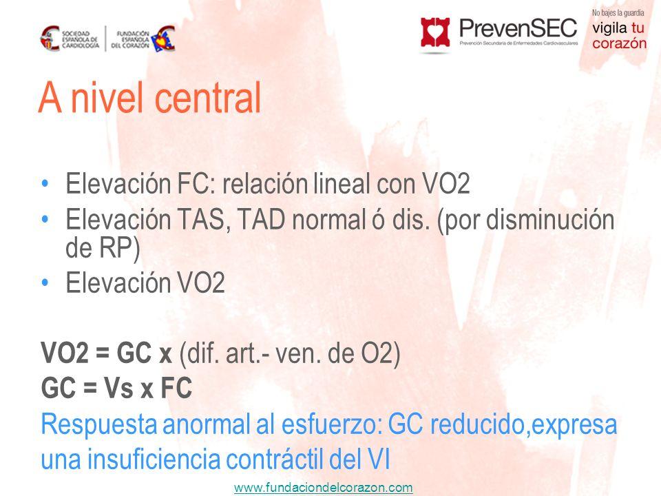 www.fundaciondelcorazon.com Elevación FC: relación lineal con VO2 Elevación TAS, TAD normal ó dis. (por disminución de RP) Elevación VO2 VO2 = GC x (d