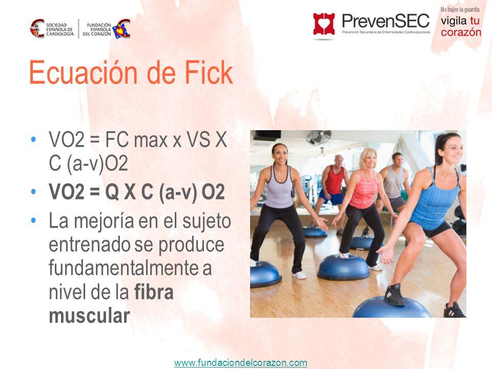 www.fundaciondelcorazon.com VO2 = FC max x VS X C (a-v)O2 VO2 = Q X C (a-v) O2 La mejoría en el sujeto entrenado se produce fundamentalmente a nivel d