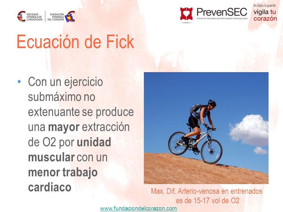 www.fundaciondelcorazon.com Con un ejercicio submáximo no extenuante se produce una mayor extracción de O2 por unidad muscular con un menor trabajo ca
