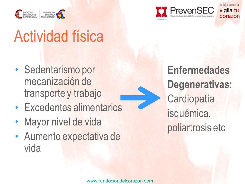 www.fundaciondelcorazon.com Actividad física Sedentarismo por mecanización de transporte y trabajo Excedentes alimentarios Mayor nivel de vida Aumento