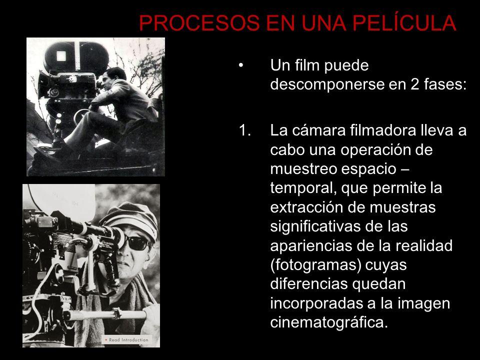 PROCESOS EN UNA PELÍCULA Un film puede descomponerse en 2 fases: 1.La cámara filmadora lleva a cabo una operación de muestreo espacio – temporal, que