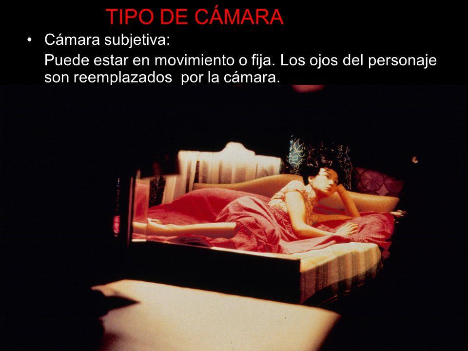 TIPO DE CÁMARA Cámara subjetiva: Puede estar en movimiento o fija. Los ojos del personaje son reemplazados por la cámara.