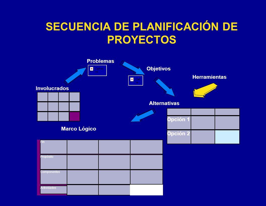 CÓMO PREPARAR EL 1er Paso: Redactar todas las condiciones negativas del árbol de problemas en forma de condiciones positivas (objetivos) que sean: – deseables y – realizables en la práctica.