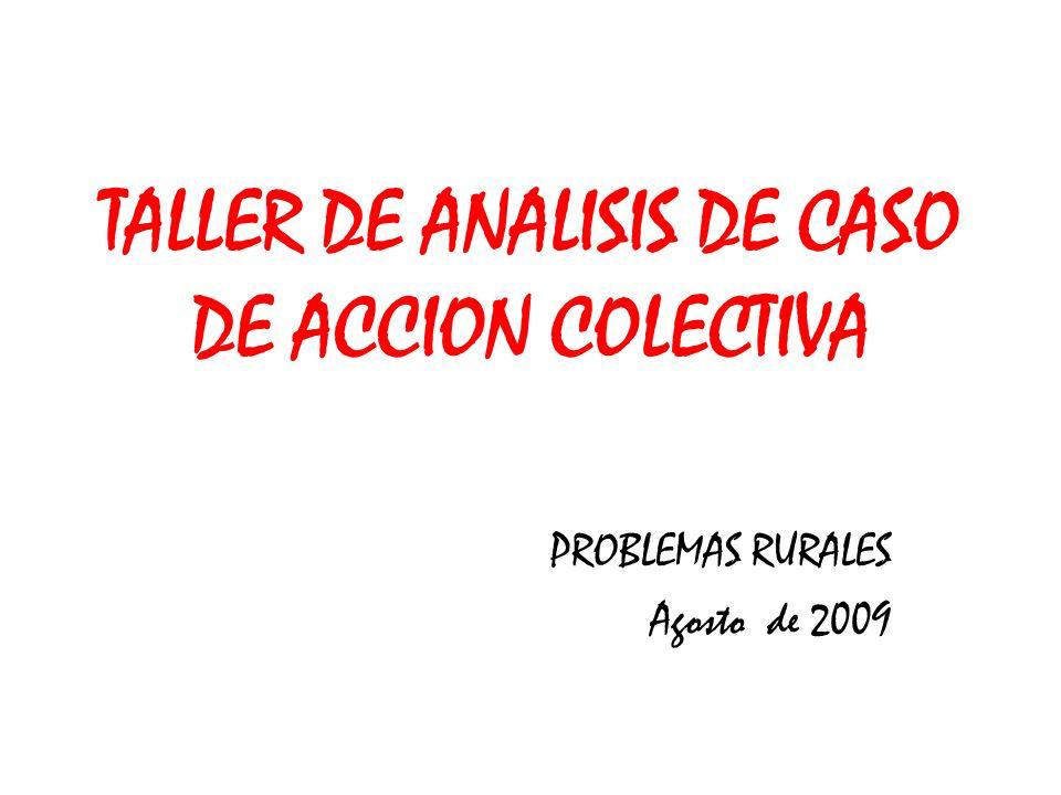 TALLER DE ANALISIS DE CASO DE ACCION COLECTIVA PROBLEMAS RURALES Agosto de 2009