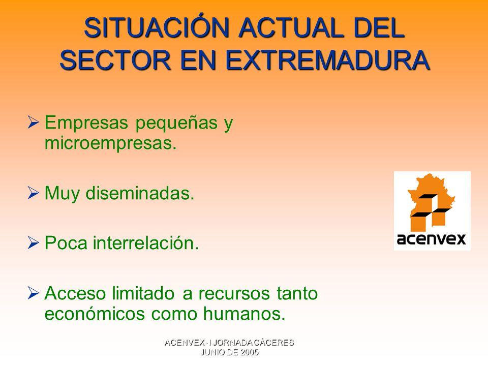 ACENVEX- I JORNADA CÁCERES JUNIO DE 2005 SITUACIÓN ACTUAL DEL SECTOR EN EXTREMADURA Empresas pequeñas y microempresas.